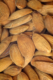 almonds2 Almonds Nutritional Benefits