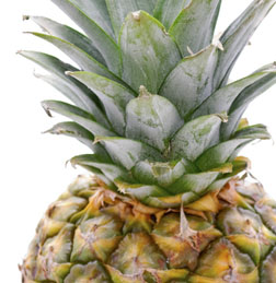 bromelain Using Bromelain for Protein Digestion, Inflammatory Conditions and More