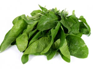 spinach Spinach Nutrition